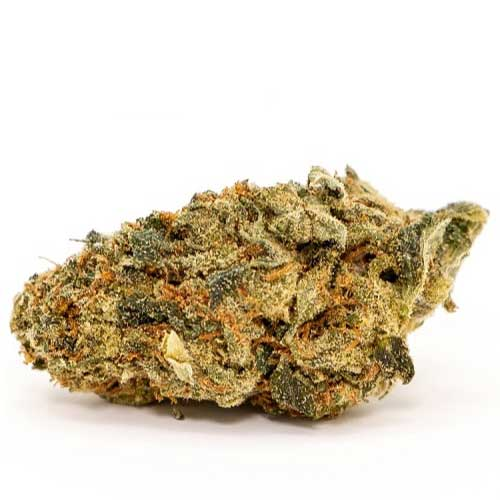 medical marijuana on ganjanetic.com